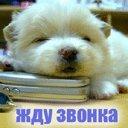 Коля Яковенко, 30 марта , Херсон, id82430054